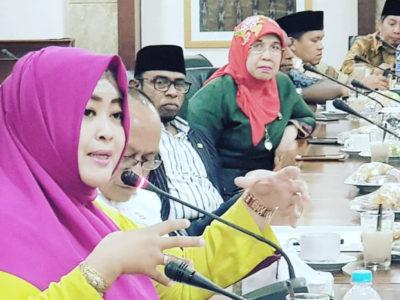DPD Paripurna, Fahira Berharap RUU Kebidanan Jadi Acuan Peningkatan Kompetensi Bidan